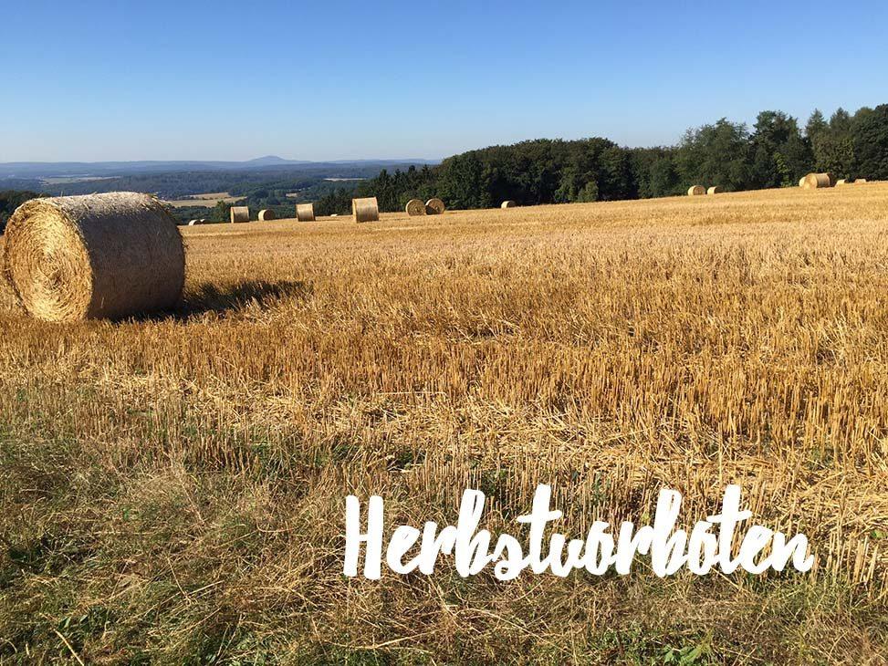 Baltzer Moden Marburg - Herbstliches Feld